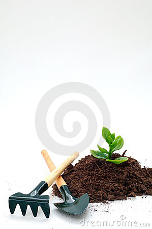 Gardening - Cultivation of a new life or idea