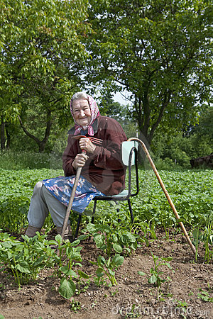 82 years old woman working in field