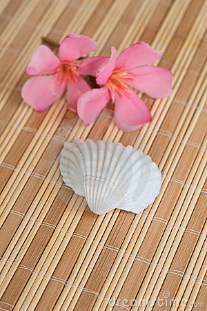 Flowers and seashell on bamboo mat