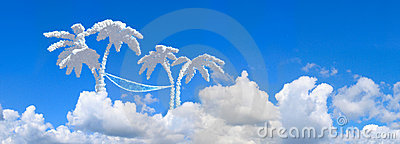 Landscape blue sky and palms