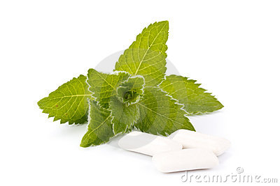 Chewing gum and fresh mint