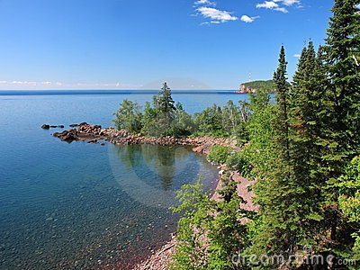 Trees on lake Superior