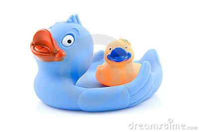 Colorful rubber ducks on white
