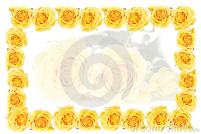 Yellow roses frame