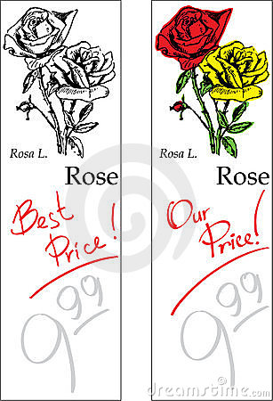 Rose - Two Price Tags
