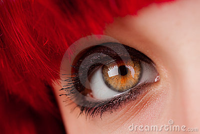 Woman's brown Eye Closeup