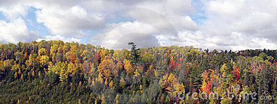 Panoramic view of fall colors