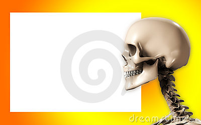 Skull Head With Blank Sign