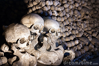 Heap of bones and skulls