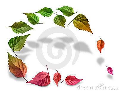Leaves_color_background