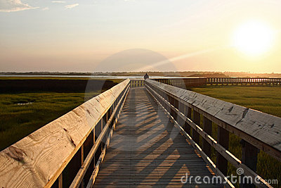 Long boardwalk over marsh