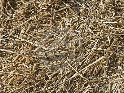 Silage background