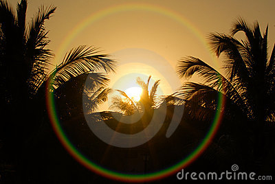Tropical sunrise with flare