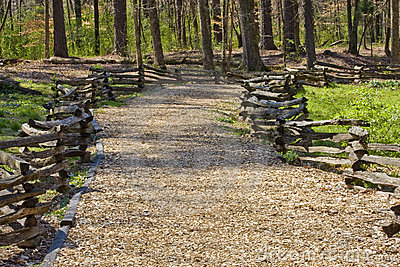 Wood Chip Trail Between Split Rail Fences