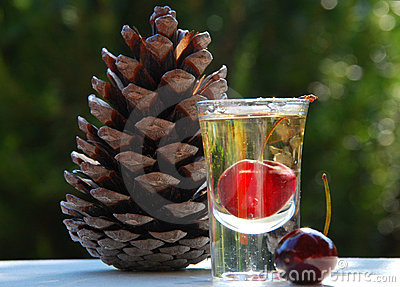 A glass of liqueur and a pine cone