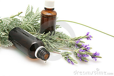 Lavender oil and flowers on white background