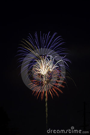 Red, white and blue fireworks against a black sky