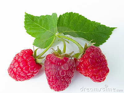 Berries of a raspberry