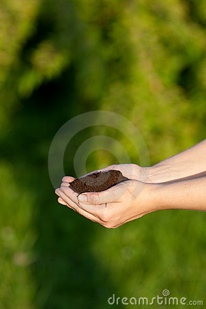 Hands holding topsoil