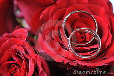 Rings and red roses