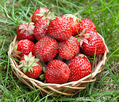 Strawberry in a basket
