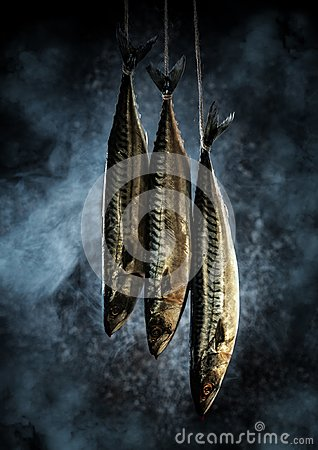 Mackerel in the smokehouse. Fresh fish in the smoke