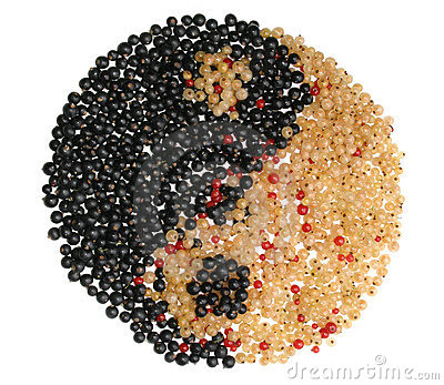 Yin Yang symbol made from different currants