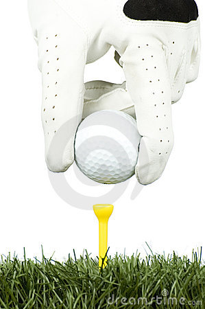 Golf ball in the tee