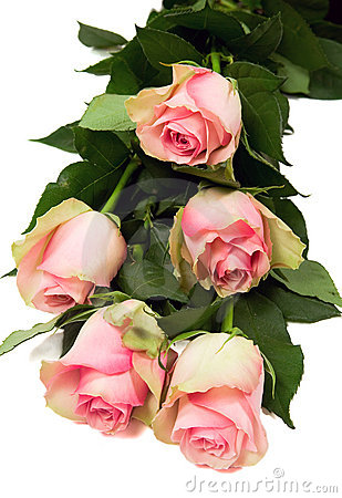 Bouquet of beautiful roses