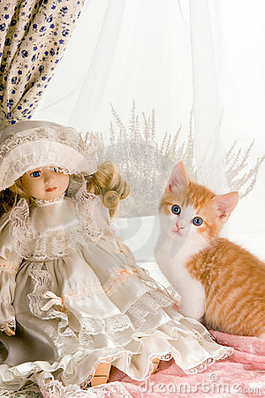 Kitten and doll