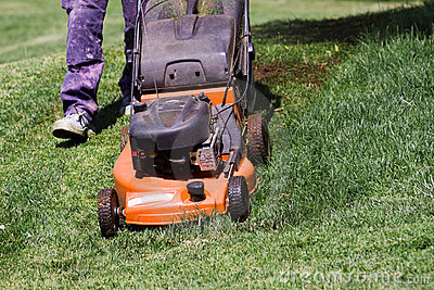 Mowing the meadows