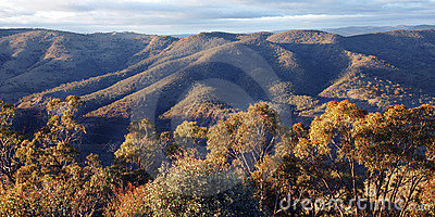 Blue Mountains Nature Landscape, Austalia