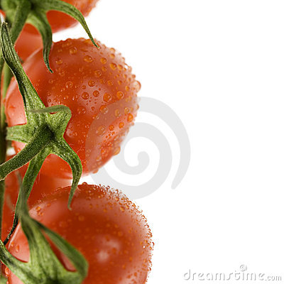Ripe fresh tomatos