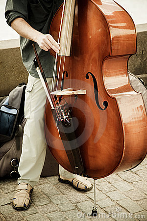 Double bass performer