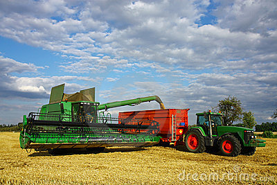 Harvester load the trailer