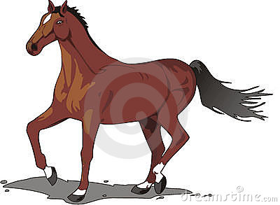 Beautiful horse drawing, color