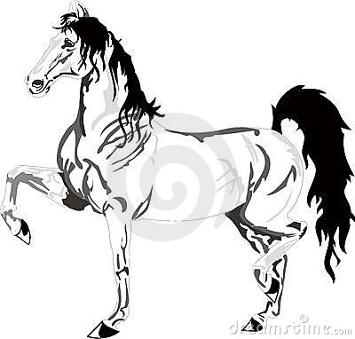 Beautiful horse drawing, black and white