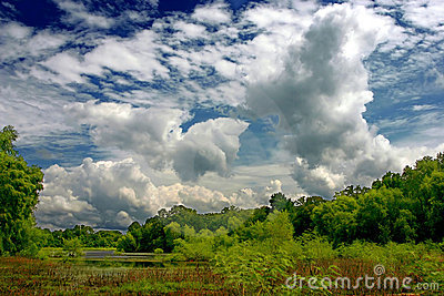 Clouds over marshland