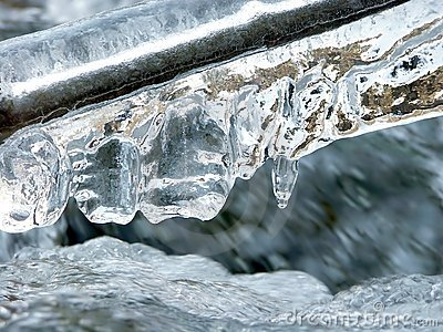 Icicles above forest stream