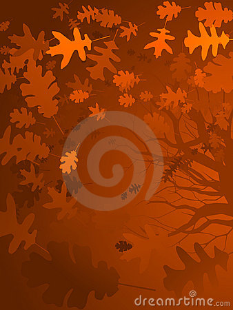 Autumn oak background