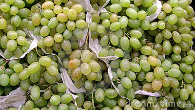 Bunches of green grapes
