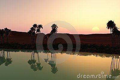 Sunset at the oasis