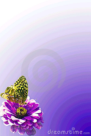 Butterfly and Flower Border