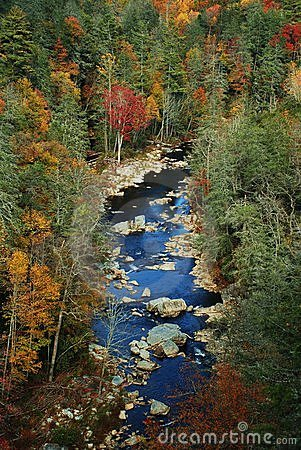 Scenic river in autumn
