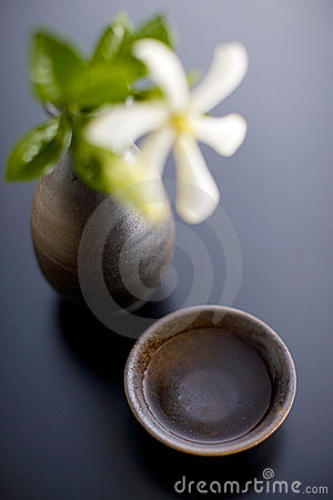 Sake cup and bottle