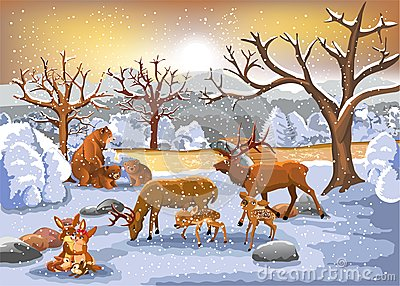stock image of families of animals enjoying winter time