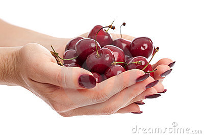 Hands ful of fresh berries