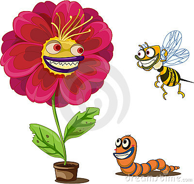 Flower pot and insects