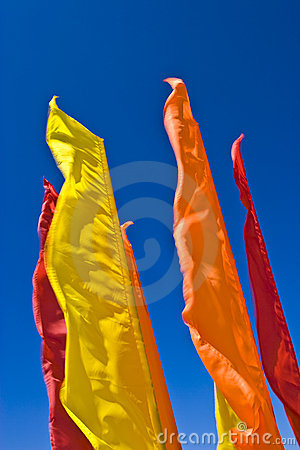 Flags skyline