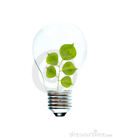 Incandescent light bulb with a tree shoot
